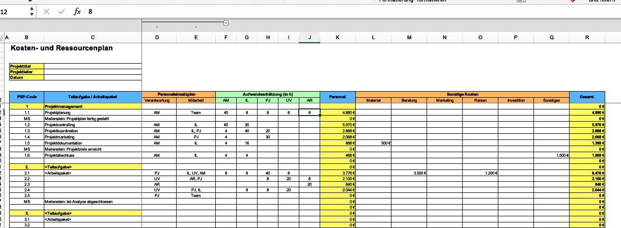 Projektmanagement mit Excel - Vorlage