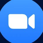 videovergaderen
